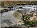 SE0188 : Aysgarth Lower Force by David Dixon