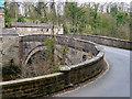 SE0188 : Yore Bridge, Aysgarth by David Dixon