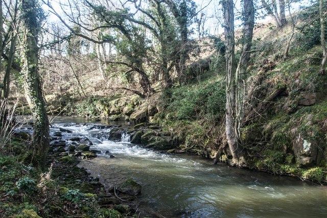 Kenly Water near Hillhead