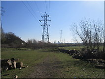 SE8912 : Pylons and old timber off Phoenix Parkway by Jonathan Thacker