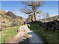 SD8880 : The Dales Way, Langstrothdale by David Dixon