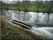 SO5074 : Fish Pass at the River Teme (Ludlow) by Fabian Musto