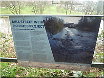 SO5074 : Sign at the Fish Pass at the River Teme (Ludlow) by Fabian Musto
