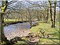SD9377 : River Wharfe at Buckden by David Dixon