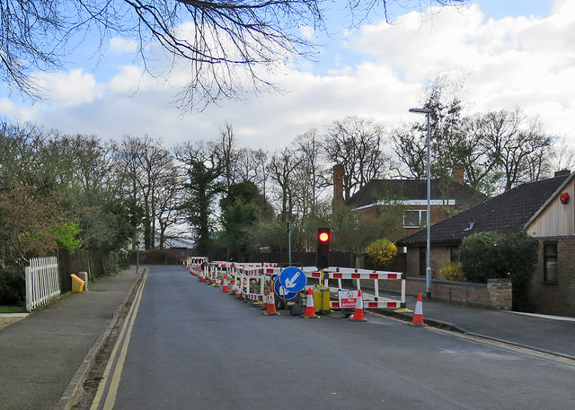 Sedley Taylor Road: temporary traffic lights by John Sutton