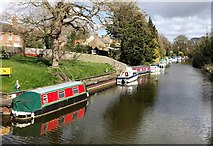 TL4196 : Boats moored on The River Nene (old course) in March, Cambridgeshire by Richard Humphrey