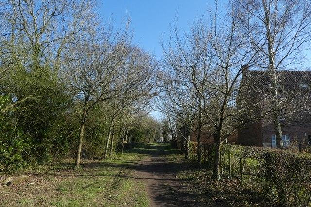 Path beside Ingram and Irwin