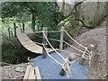 SO0953 : New rope bridge by Bill Nicholls
