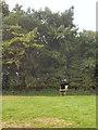 SS8579 : Public footpath approaching Tythegston's Long Belt by eswales