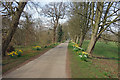 TA1746 : Avenue to Wassand Hall by Des Blenkinsopp