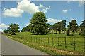 SS6728 : Castle Hill Deer Park by Derek Harper