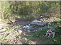 ST6165 : Ringspit Lane rubbish by Neil Owen