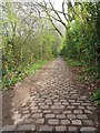 SK3281 : Cobbled footpath by Graham Hogg