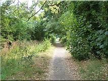 TQ0487 : Path from Denham station to Denham Village by Robin Webster