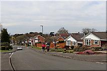 SO9095 : Chanterelle Gardens on Colton Hills in Penn, Wolverhampton by Roger  Kidd