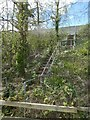 SX9589 : Emergency stairs off M5 (Exminster viaduct) by David Smith