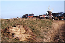 TG0444 : Gatered reeds and windmill at Cley next the Sea by Colin Park