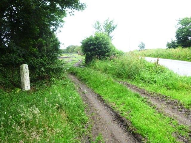 Old Milestone north west of Launceston