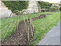 SE2634 : Willow tunnel awaiting leaves, Gott's Park by Stephen Craven