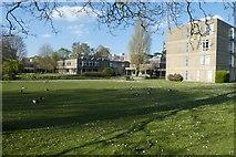 SE6250 : Derwent Lawns by DS Pugh