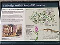 TQ5639 : Noticeboard for the Local Commons by John P Reeves