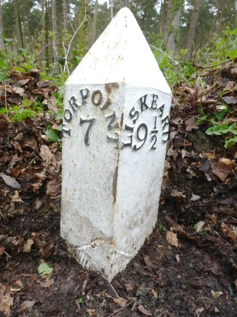 Old Milepost by the A374 at Sconner Turf Wood