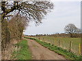 SO9095 : Farm road near Colton Hills in Staffordshire by Roger  Kidd