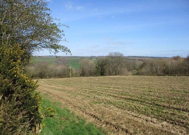 Stubble field near Netherburn