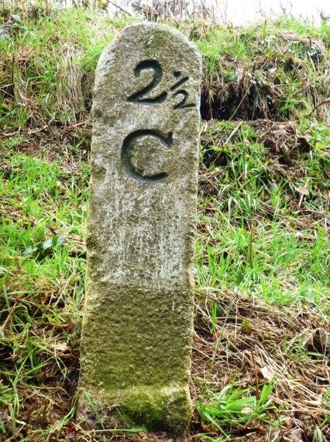 Old Milestone by the former A388, north of Vernigo Cross