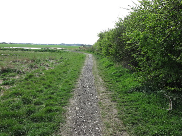 Public Footpath near Brier  Dene Farm, Whitley Bay