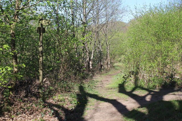 Footpath junction at top of bank by B4251