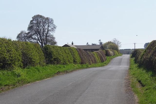 Road south of Cappuck
