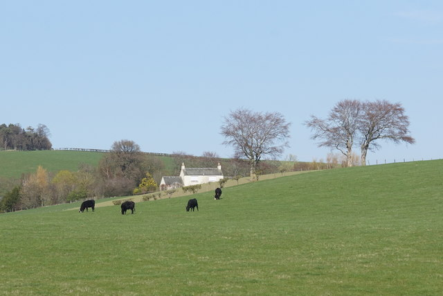 Fields between Cappuck and Crailinghall
