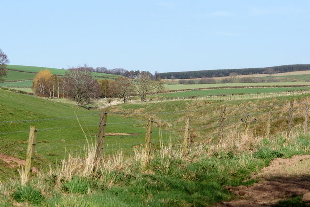 Valley of the Cringle Burn, Cappuck