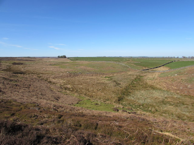 The Confluence of Two Tiny Moorland Streams