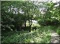 SD5186 : Disused Canal, Sedgwick, Cumbria by Alex Passmore
