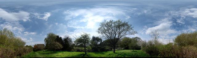 360 degrees around my Orchard