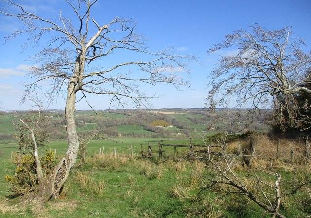 Field corner west of Lockhart's Knowe