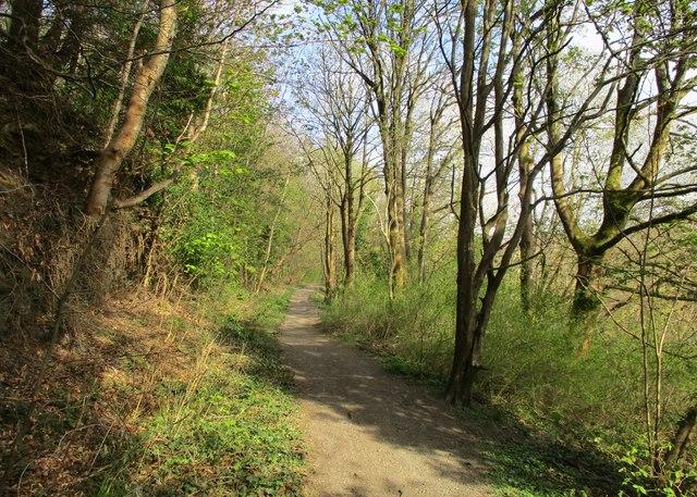 Clyde Walkway near Motherwell