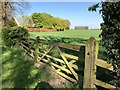TF4212 : A double gate to Ox Field on Gote Lane, Gorefield by Richard Humphrey