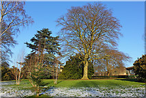 SE3238 : Arboretum Lawn by Wayland Smith