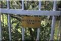 SJ2028 :  St Silin's Church: Millennium Yew plaque by Bob Harvey