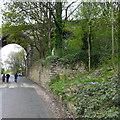 SE1423 : Retaining wall, Thornhills Beck Lane, Clifton by Humphrey Bolton