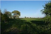 SE6350 : Farmland near Low Lane by DS Pugh
