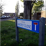 SZ0696 : West Howe: Anstey Close by Chris Downer