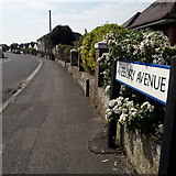 SZ0896 : Northbourne: Avebury Avenue by Chris Downer