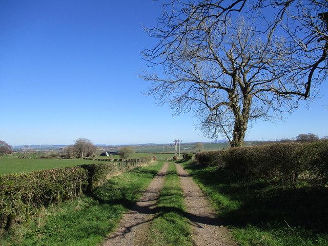Farm track near Laigh Netherfield