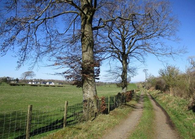 Farmland near Laigh Netherfielddyke