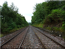NY6565 : The railway between Gilsland and Greenhead seen from where the Pennine Way crosses it by habiloid