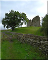 NY6566 : Thirlwall Castle by habiloid